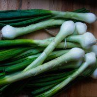 Cebollas Cambray