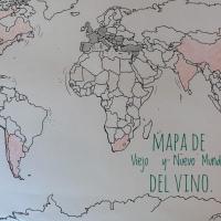 El nuevo mundo y viejo mundo del vino